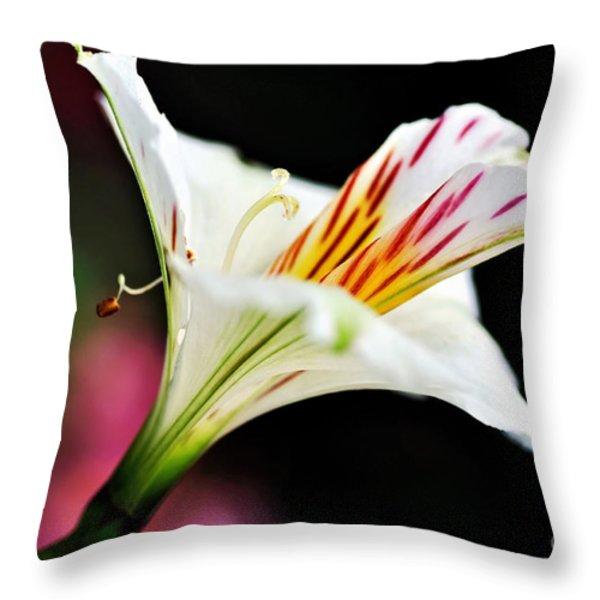 Princess Lily Awakening Throw Pillow by Kaye Menner