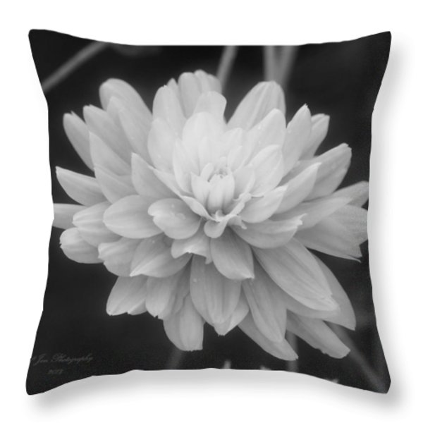 Prissy In Black And White Throw Pillow by Jeanette C Landstrom