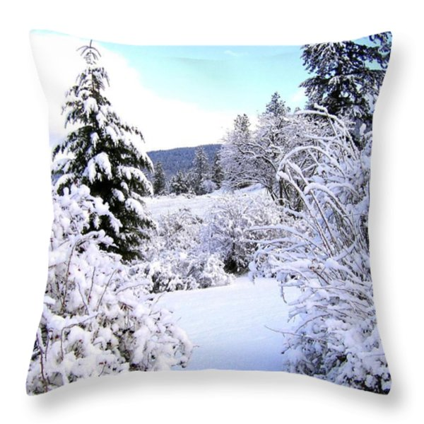 Pristine Winter Trail Throw Pillow by Will Borden