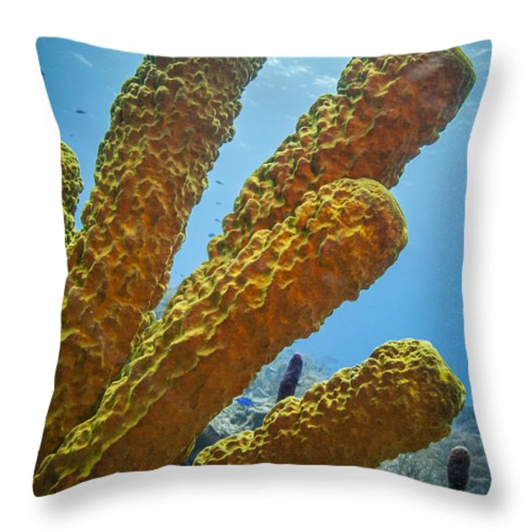 Projection Throw Pillow by Jean Noren