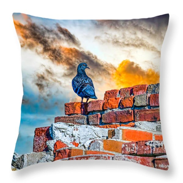 Proud To Be A Pigeon Throw Pillow by Bob Orsillo