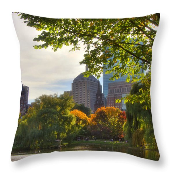 Public Garden Skyline Throw Pillow by Joann Vitali