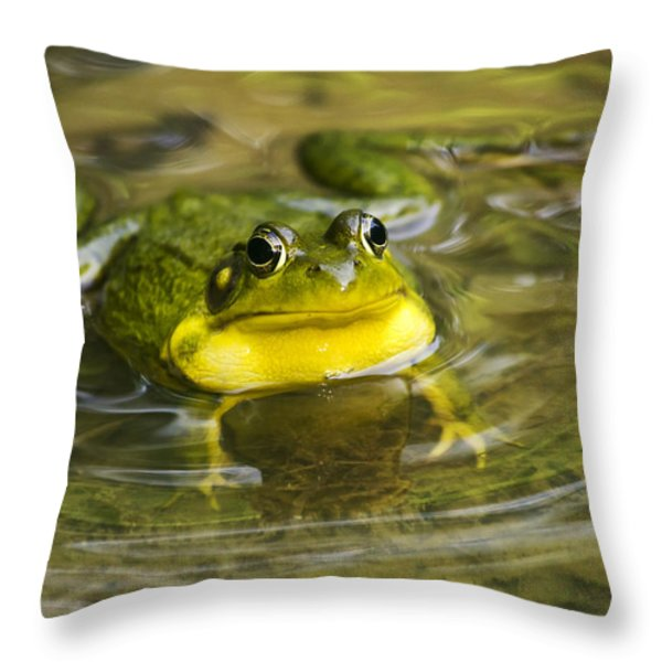 Puddle Jumper Throw Pillow by Christina Rollo