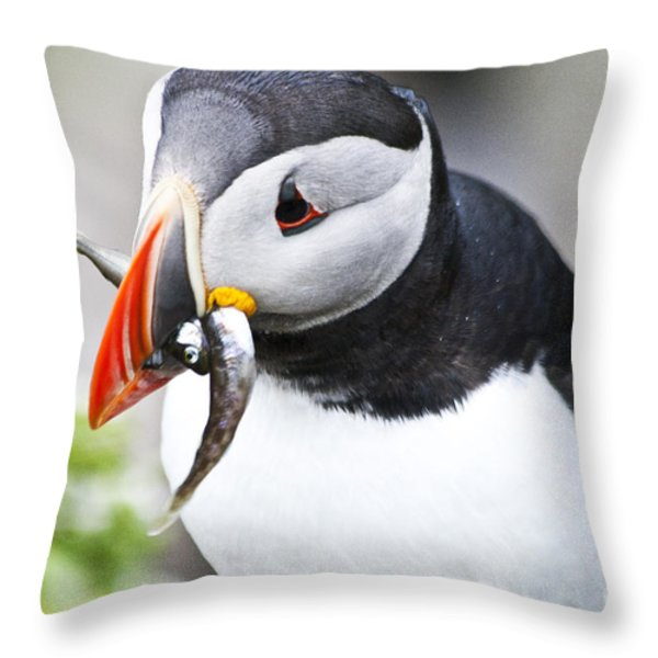 Puffin With Fish Throw Pillow by Heiko Koehrer-Wagner