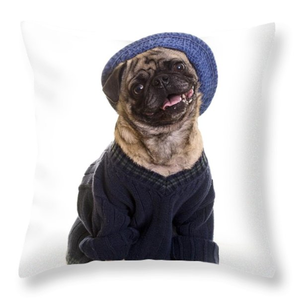 Pug in sweater and hat Throw Pillow by Edward Fielding
