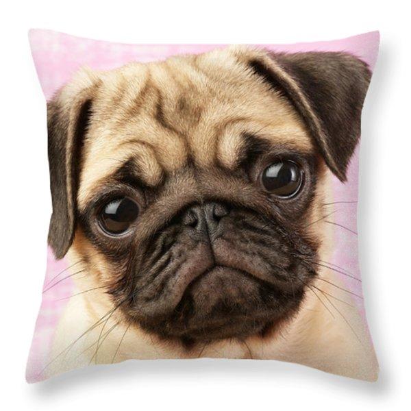 Pug Portrait Throw Pillow by Greg Cuddiford