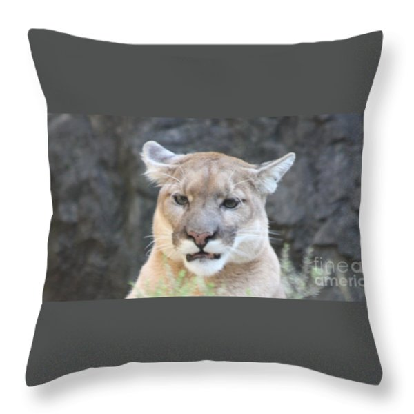 Puma Head Shot Throw Pillow by JOHN TELFER