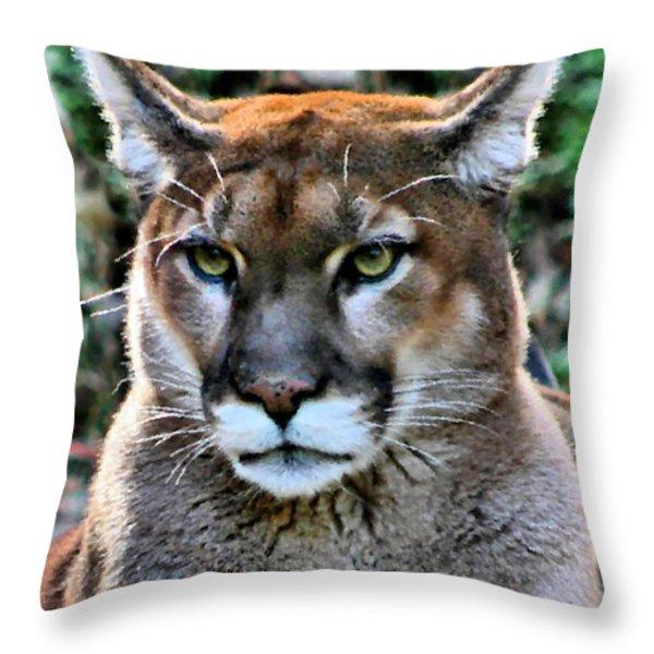 Puma Throw Pillow by Kristin Elmquist