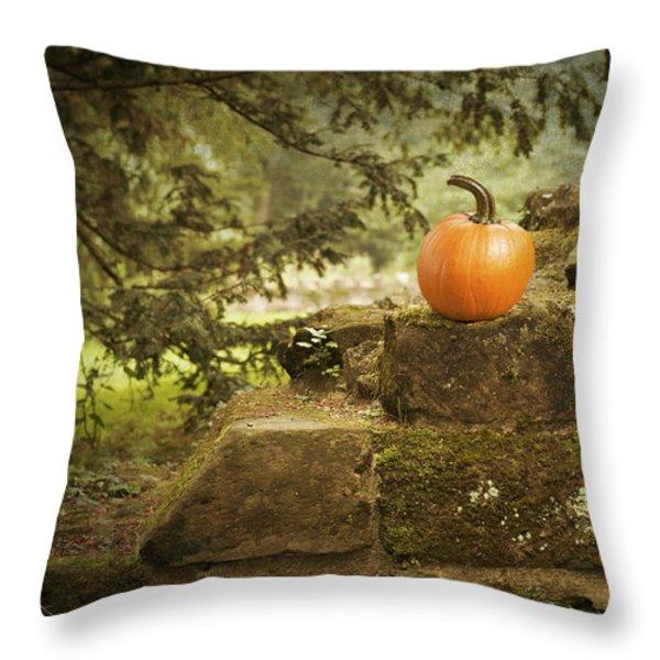Pumpkin Throw Pillow by Amanda And Christopher Elwell