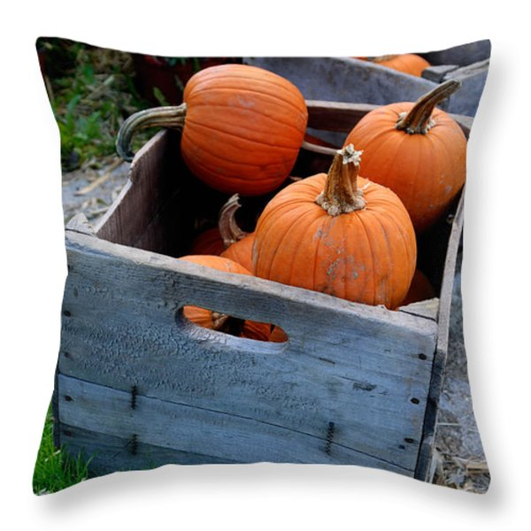 Pumpkins in Wooden Crates Throw Pillow by Amy Cicconi
