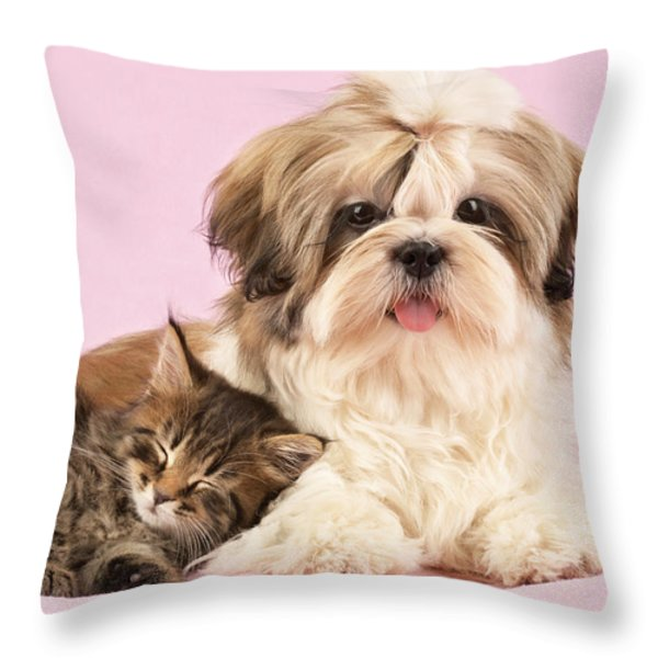 Puppy And Kitten Throw Pillow by Greg Cuddiford