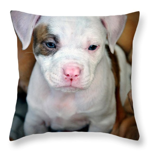 Puppy Love Throw Pillow by Donna Proctor