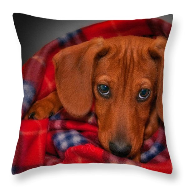 Puppy Love Throw Pillow by Susan Candelario