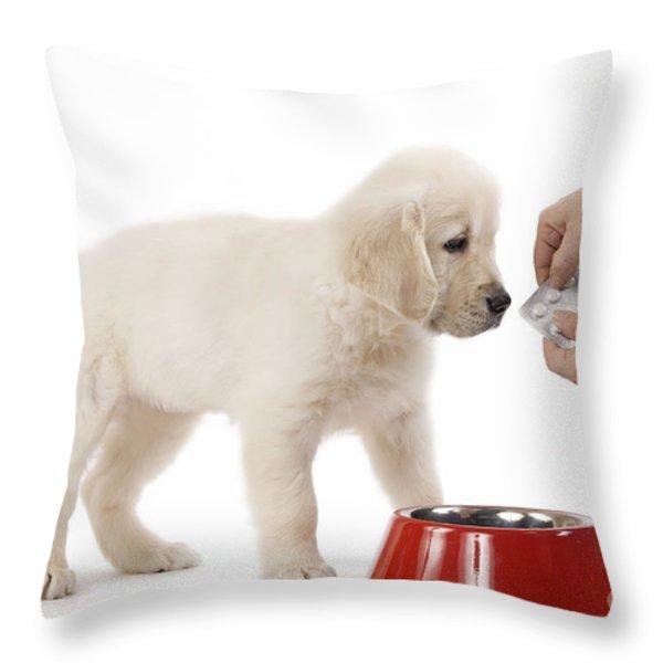 Puppy Receiving Medicine Throw Pillow by Jean-Michel Labat