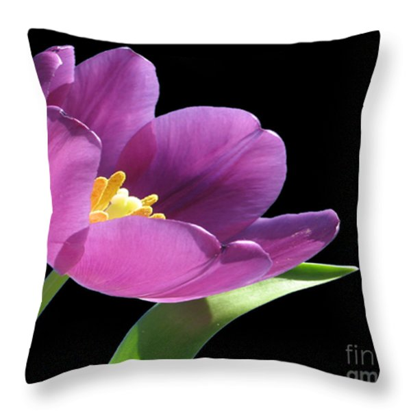 Pure Beauty Throw Pillow by Cheryl Young