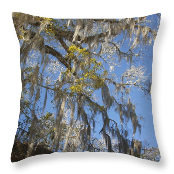 Pure Florida - Spanish Moss Throw Pillow by Christine Till