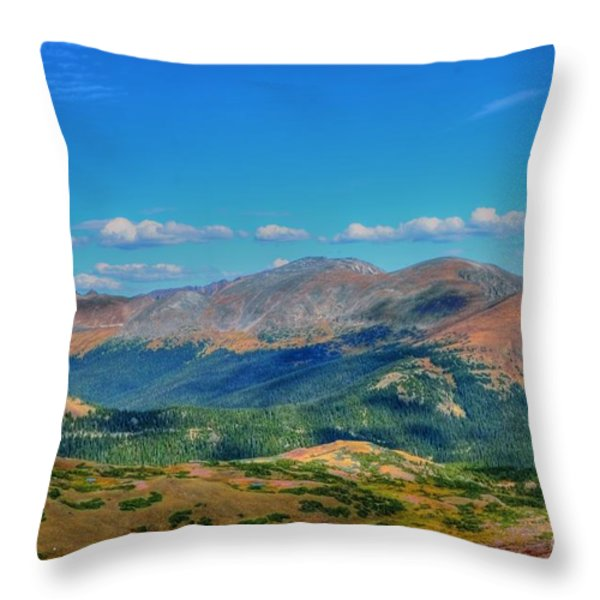 Pure Joy Throw Pillow by Kathleen Struckle