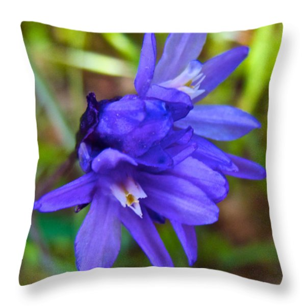 Purple Blue Dicks In Park Sierra-ca Throw Pillow by Ruth Hager