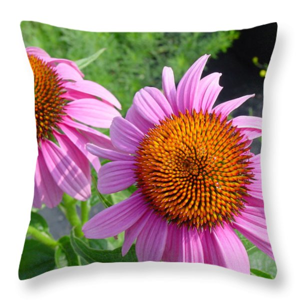 Purple Coneflowers Throw Pillow by Suzanne Gaff
