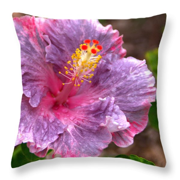 Purple Hibiscus Throw Pillow by Brian Harig