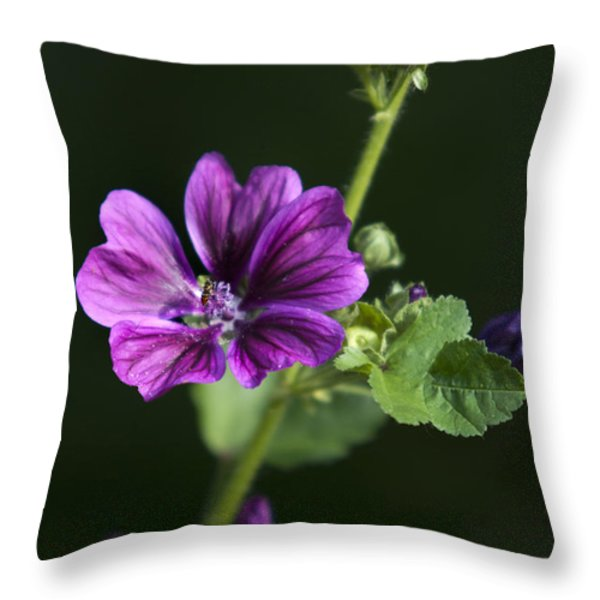 Purple Hollyhock Flowers Throw Pillow by Christina Rollo