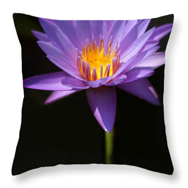 Purple Petals Throw Pillow by Sabrina L Ryan