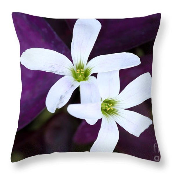 Purple Queen Flowers Throw Pillow by Sabrina L Ryan