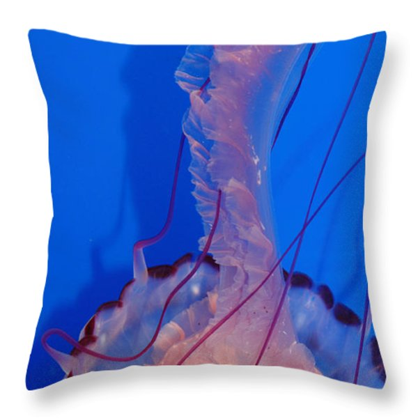 Purple Striped Jelly Fish 5D24929 Throw Pillow by Wingsdomain Art and Photography