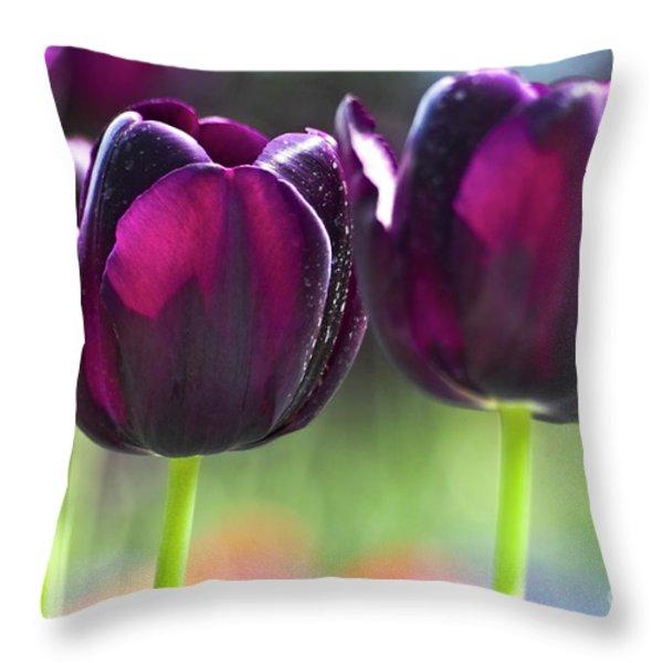 Purple Tulips Throw Pillow by Heiko Koehrer-Wagner