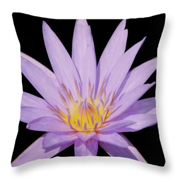 Purple Water Lily Throw Pillow by Kim Hojnacki