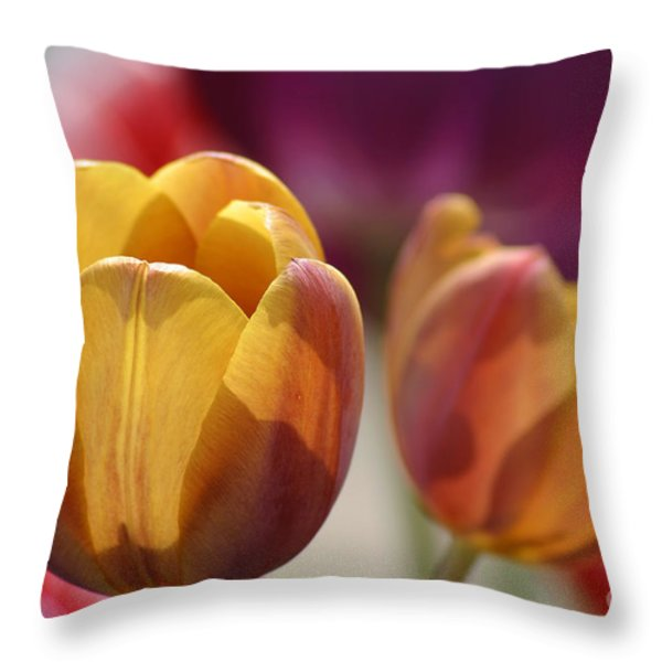Purpleyellowtulips7016 Throw Pillow by Gary Gingrich Galleries