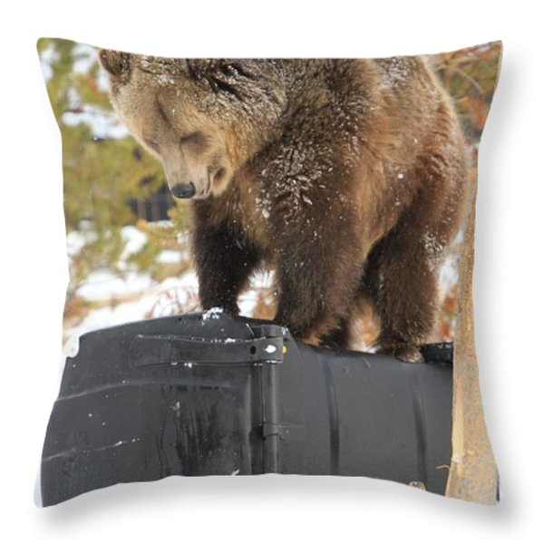Puzzler Throw Pillow by Adam Jewell