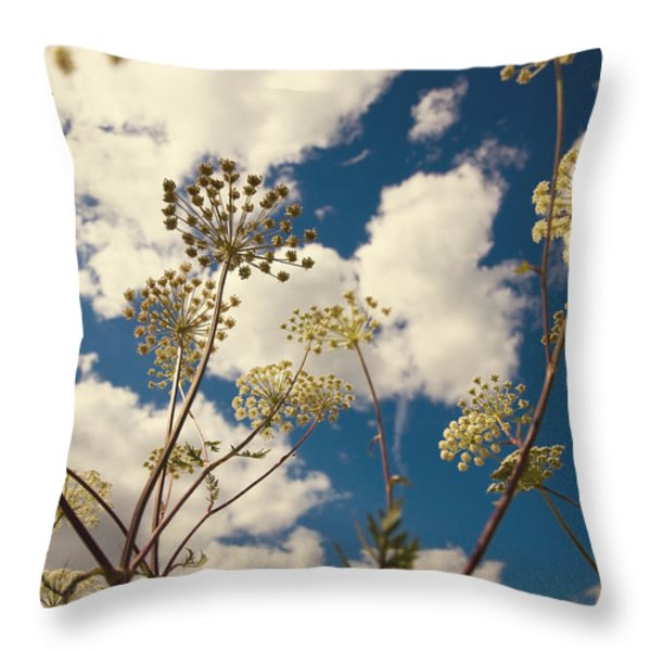 Queen Anne Lace and Sky I Throw Pillow by Jenny Rainbow