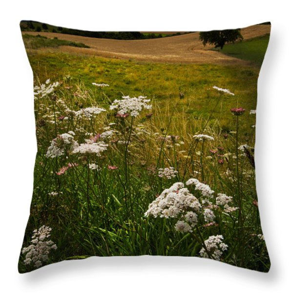 Queen Anne's Lace Throw Pillow by Debra and Dave Vanderlaan