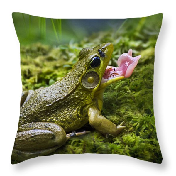 Quick And Deadly Throw Pillow by Christina Rollo