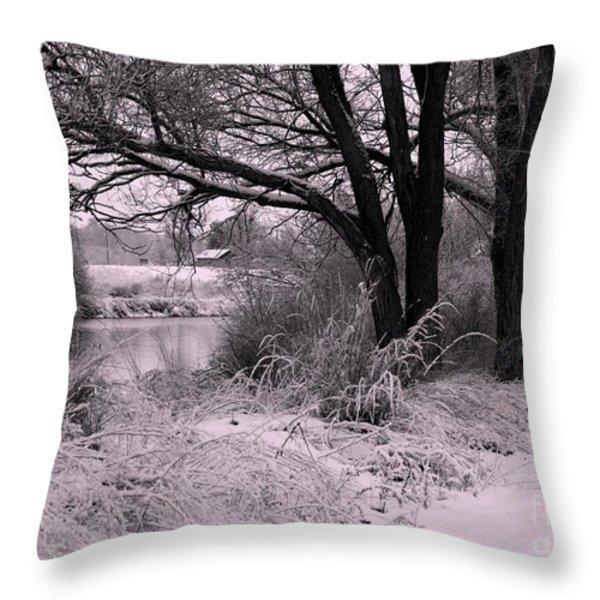 Quiet Morning After Snowfall Throw Pillow by Carol Groenen