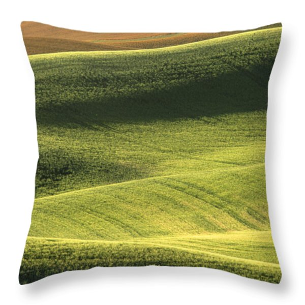 Quiet Morning In The Palouse  Throw Pillow by Sandra Bronstein