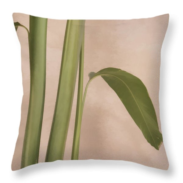 Quietly Throw Pillow by Carol Leigh