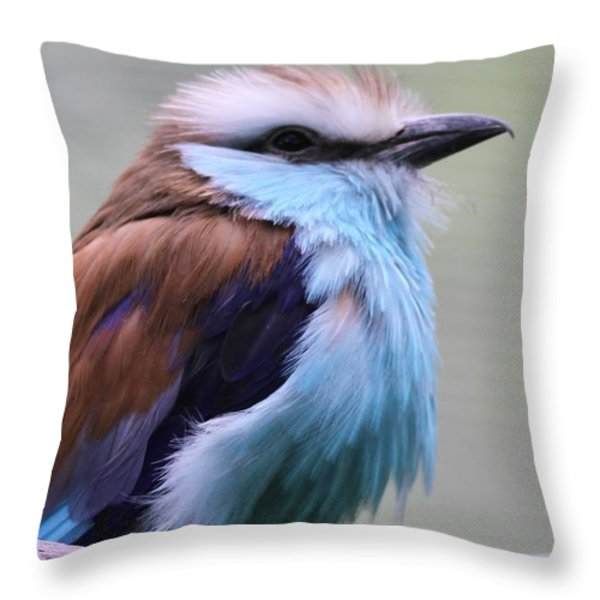 Racquet Tailed Roller Throw Pillow by Dan Sproul