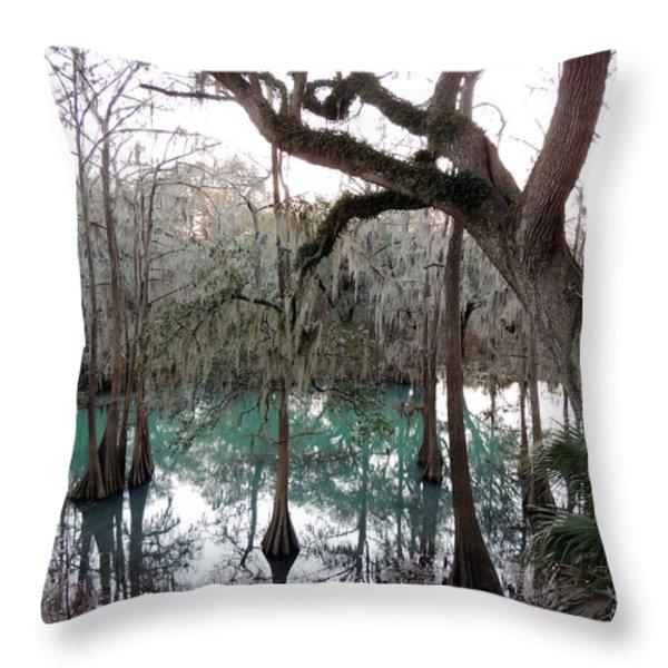 Radium Springs Creek Throw Pillow by Kim Pate