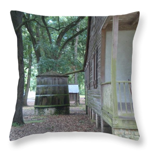 Rain Catcher Throw Pillow by Jennifer Lavigne