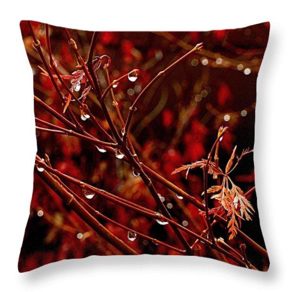 Rain Dance Throw Pillow by Rona Black