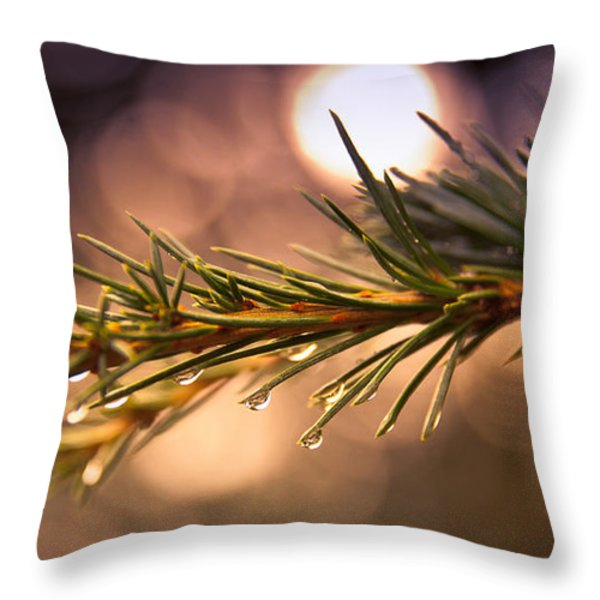 Rain Droplets on Pine Needles Throw Pillow by Loriental Photography
