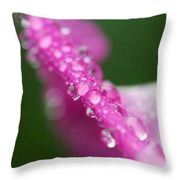 Rain Drops On The Edge Throw Pillow by Amanda Kiplinger