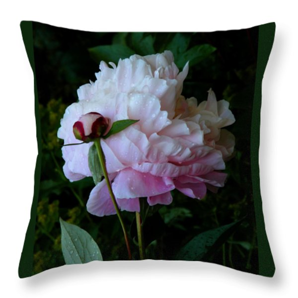 Rain-soaked Peonies Throw Pillow by Rona Black