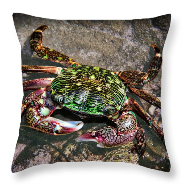 Rainbow Crab Throw Pillow by Mariola Bitner