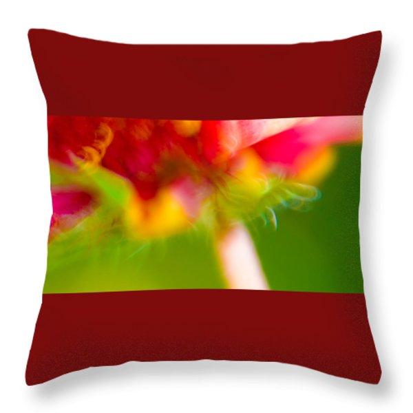 Rainbow Flower Throw Pillow by Darryl Dalton