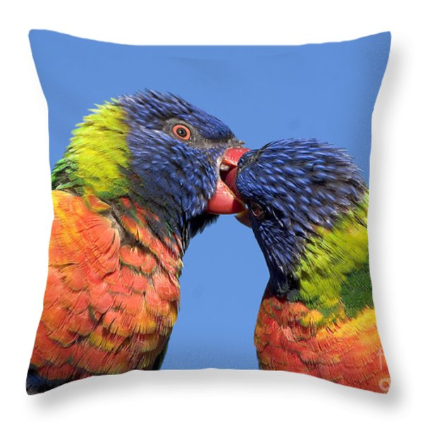 Rainbow Lorikeets Throw Pillow by Steven Ralser