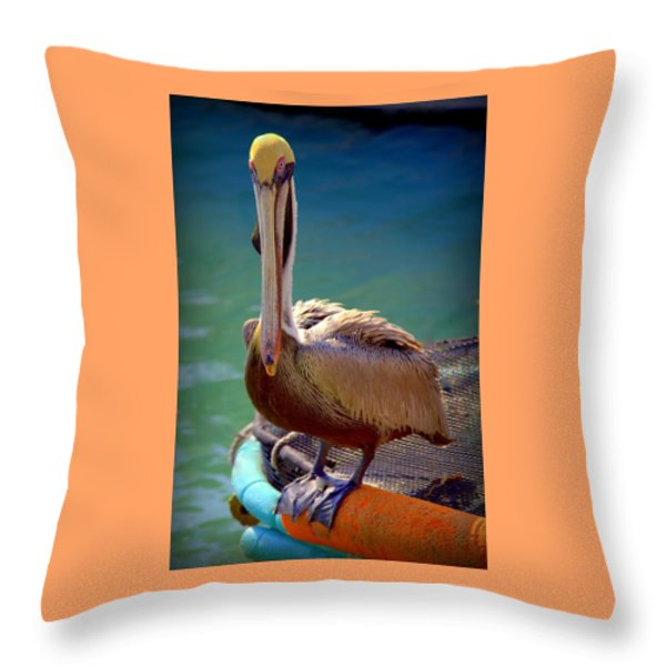 Rainbow Pelican Throw Pillow by Karen Wiles