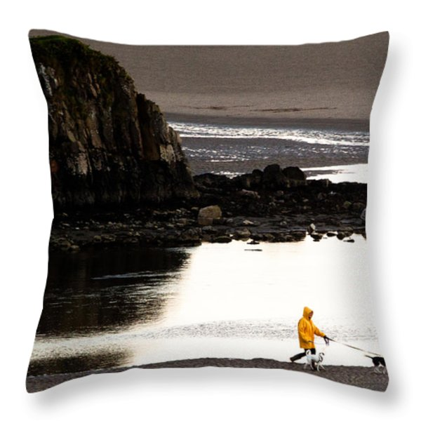 Raincoat Dog Walk Throw Pillow by John Daly